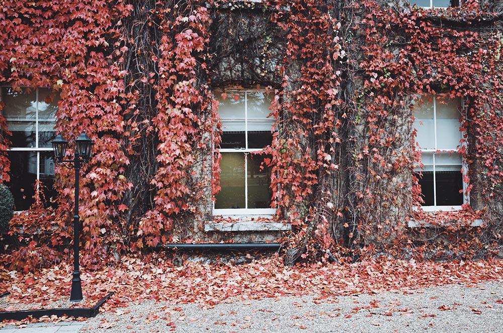 ¿Cómo preparar tu alquiler vacacional para el otoño?