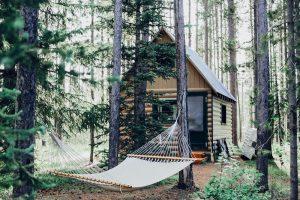 cabin rental business