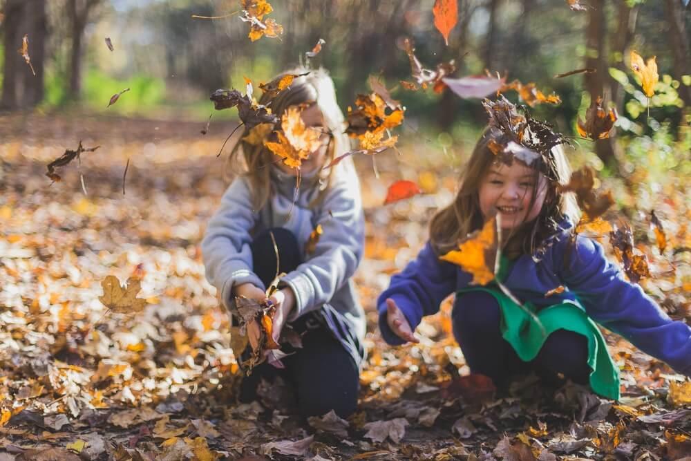 Viaje en otoño