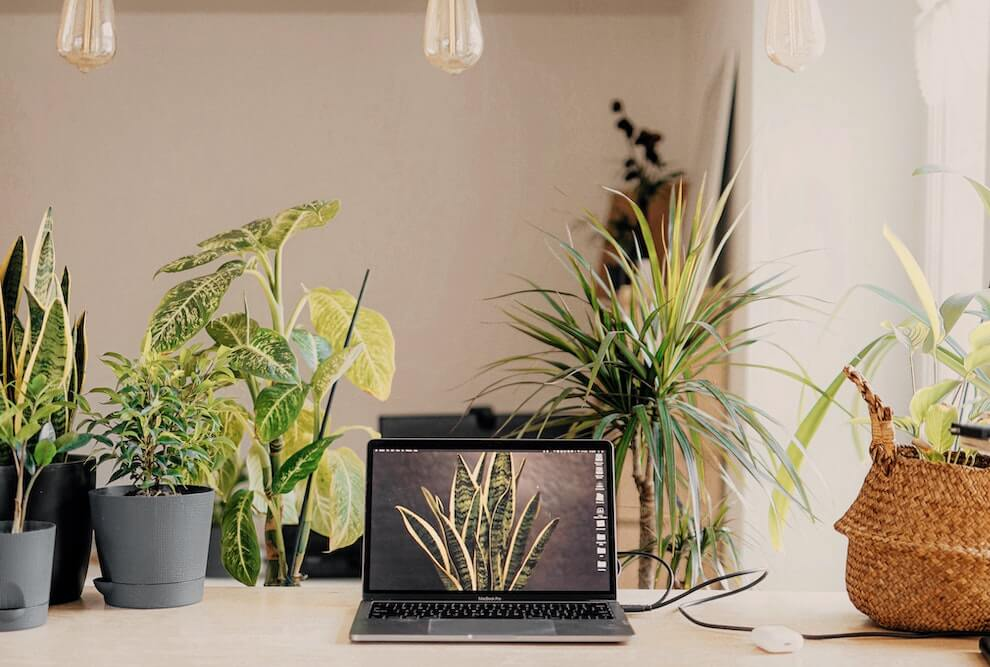 Vacation rentals for remote workers